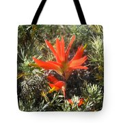 Indian Paintbrush And California Sage Tote Bag