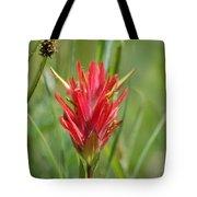 Indian Paintbrush Tote Bag