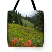Indian Paintbrush Window Into The San Juans Tote Bag