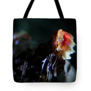 Indian Pipe 3 Tote Bag