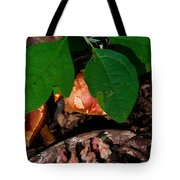 Indian Pipe 7 Tote Bag