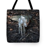 Indian Pipes Tote Bag