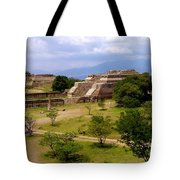 Indian Ruins Tote Bag
