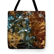 Indian Summer Along The Wissahickon Tote Bag