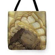 Indian Temple Arches Tote Bag