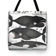Indigenous Fish, Greenland, 18th Century Tote Bag