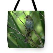 Indigo Bunting - Felts Nature Preserve - Ellenton Florida Tote Bag