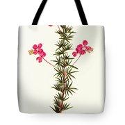 Indigo Plant Tote Bag