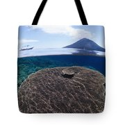 Indonesia, Coral Reef Tote Bag