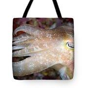 Indonesia, Cuttlefish Tote Bag
