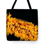 Indonesia, Goby Tote Bag
