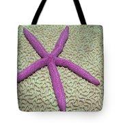 Indonesia, Pink Sea Star Tote Bag