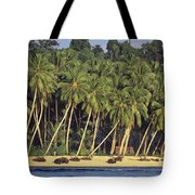 Indonesian Beach Tote Bag
