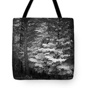 Infared Photograph Tote Bag