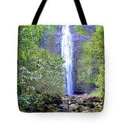 Infinity Falls Tote Bag