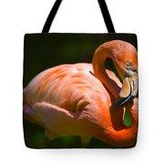Pink Flamingo Bath Mats
