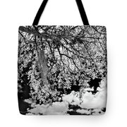 Infrared Indian River State College Hendry Campus #8 Tote Bag