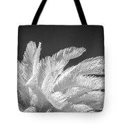 Infrared Sago Palm Tote Bag