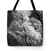 Infrared Tree Pic Tote Bag