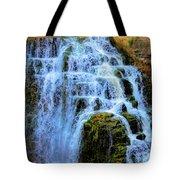 Inglis Falls Tote Bag