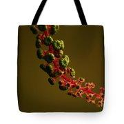 Inkberry Strand Tote Bag