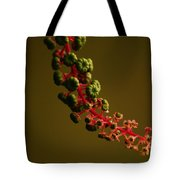 Inkberry Strand Tote Bag