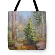 Inlet,winter's End, Mcdowell Tote Bag