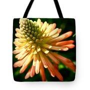 Inn Bloom Tote Bag
