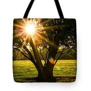 Innerlight Tote Bag
