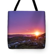 Inquisitive Flock At Dawn, Harris Tote Bag