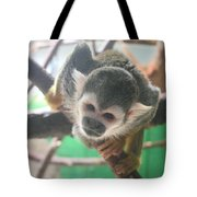 Inquisitive Monkey Tote Bag