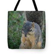 Inquisitive Squirrel Tote Bag
