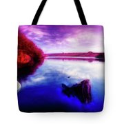 Inquisitive Swan Tote Bag