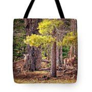 Inquisitive Whitetail Deer Tote Bag