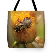 Insect - Bee - Dare To Bee Different Tote Bag