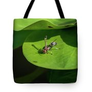 Insect On Lotus Leaf Tote Bag