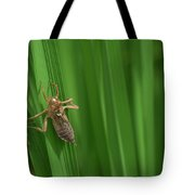 Insect Stain On The Leaf Tote Bag