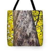 Insect Writing Tote Bag