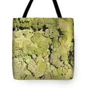 Inside Mount Kilimanjaro National Park Tote Bag