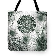 Insights From The Infinite Intelligence #657 Tote Bag