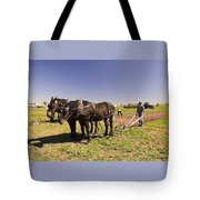 Instructing The Horses Four  Tote Bag