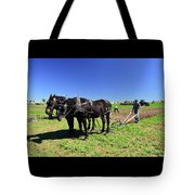 Instructing The Horses Two  Tote Bag