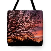 Intense Sunset Tree Silhouette Tote Bag