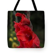 Intensely Glad Tote Bag