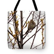Intent Look Tote Bag