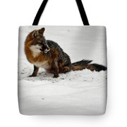 Intent Red Fox Tote Bag