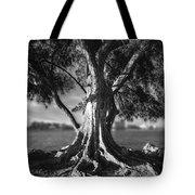 Intercoastal Pine Tote Bag