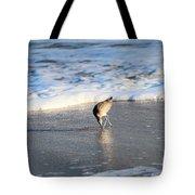 Interesting Find Tote Bag
