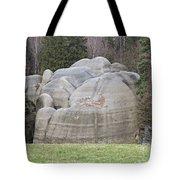 Interesting Rock Formation - Elephant Rocks Tote Bag