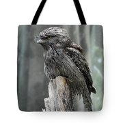 Interesting Tawny Frogmouth Perched On A Tree Stump Tote Bag